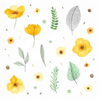 Plantas y flores pintadas con acuarelas