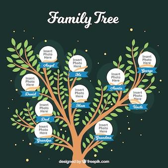 Plantilla de bonito árbol genealógico