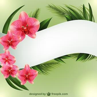 Plantilla de fondo con orquídeas