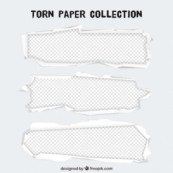 Plantilla de papeles rasgados