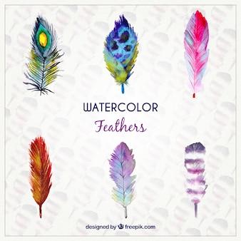 Pluma de acuarela en estilo de colores