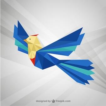 Poligonal ave exótica