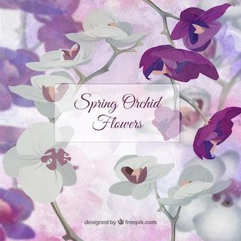Precioso fondo de orquídeas de primavera