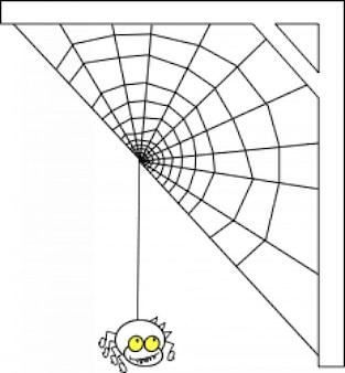 ragno con una tela de media