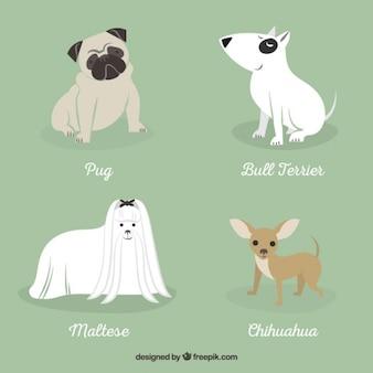 Razas de perros ilustración