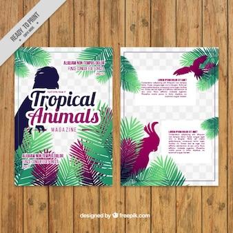 Revista de pájaros exóticos de colores
