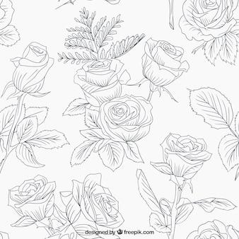 rosas incompletos y de las hojas
