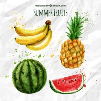 Sabrosas frutas exóticas de acuarela
