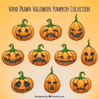 Selección de calabazas de halloween dibujadas a mano
