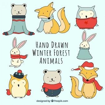 Set de animales dibujados a mano con ropa de invierno