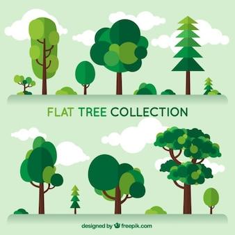 Set de árboles de diferente tipo en diseño plano