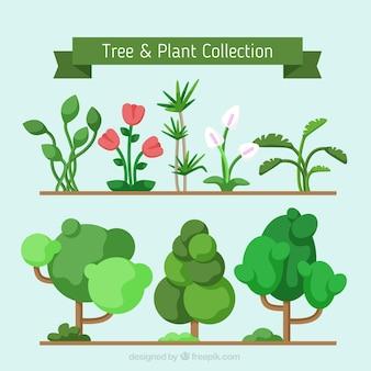 Set de árboles geométricos y plantas