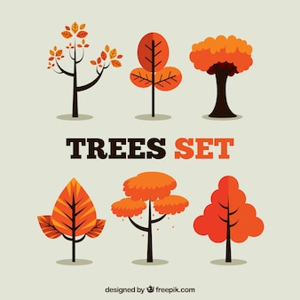 Set de árboles naranjas