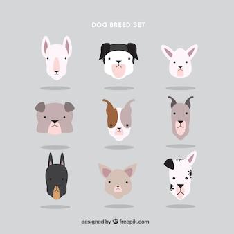 Set de avatares de razas de perro