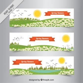 Set de banners de primavera