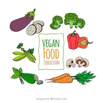 Set de bocetos de verduras