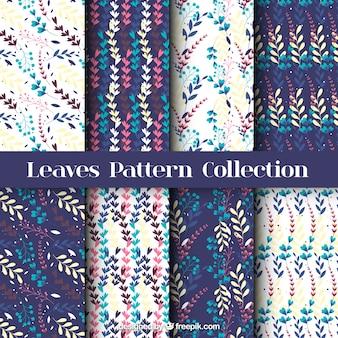 Set de bonitos patrones de hojas de colores