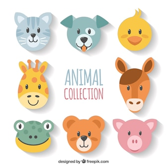 Set de caras de animales geométricas