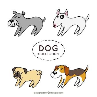 Set de cuatro perros de perfil dibujados a mano