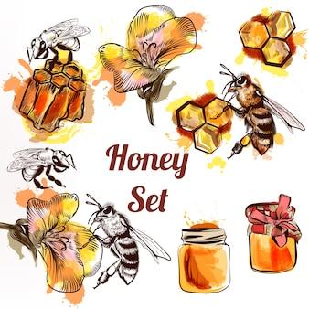 Set de elementos de miel