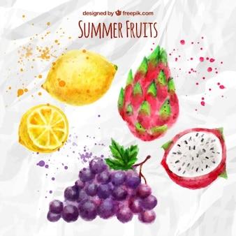 Set de frutas tropicales de acuarela