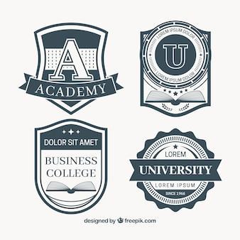 Set de insignias de educación en estilo vintage