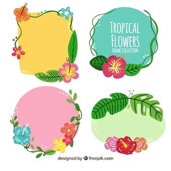 Set de marcos con detalles florales