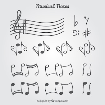 Set de notas musicales y pentagrama