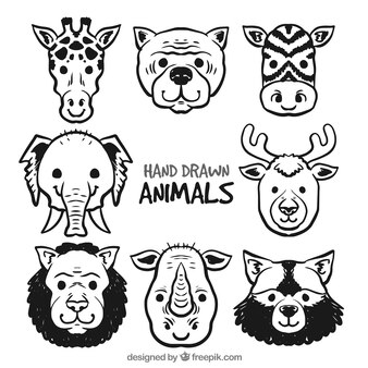 Set de ocho caras de animales dibujadas a mano