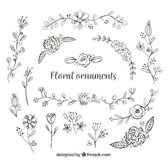 Set de ornamentos de flores dibujados a mano