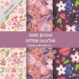 Set de patrones decorativos de flores de cerezo