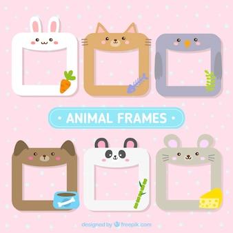Set de seis bonitos marcos animales