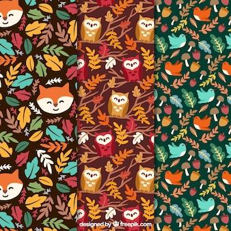 Set de simpáticos patrones otoñales con animales