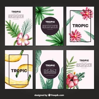 Set de tarjetas tropicales de acuarela