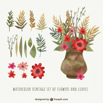 Set vintage de acuarela de flores y hojas