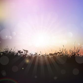 Silueta de hierba y plantas contra un cielo del atardecer