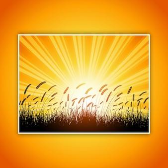 Silueta de trigo contra un cielo del atardecer
