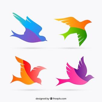 Siluetas de aves coloridas