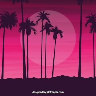 Siluetas de palmeras contra un cielo nocturno