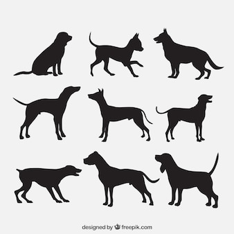 Siluetas de razas de perro