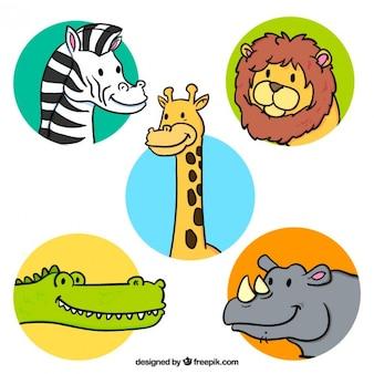 Simpáticos bocetos de animales africanos