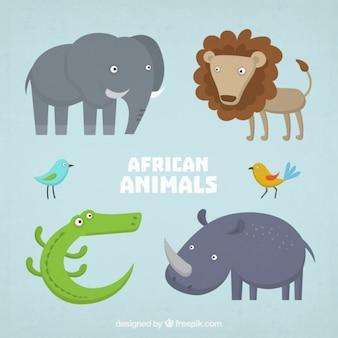 Simpáticos personajes de animales