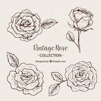 Surtido de rosas en estilo vintage