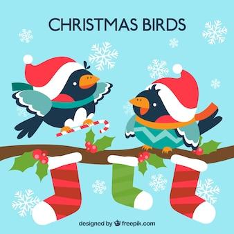 Tarjeta de pájaros de navidad