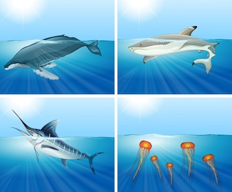 Tiburón y otros animales marinos en el mar ilustración