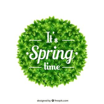 Tiempo de primavera en arbusto redondo