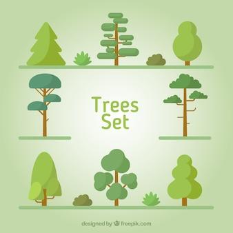 Tipología de árboles en diseño plano