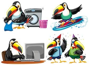 Toucan haciendo diferentes actividades ilustración