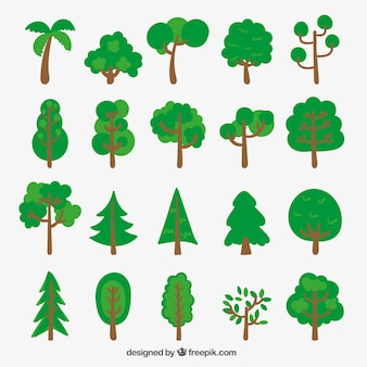 Variedad de árboles esbozados