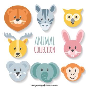 Variedad de caras de animales fantásticas